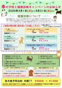 春の予防キャンペーン実施中|厚木キジュ動物病院