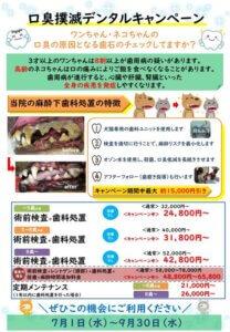 口臭撲滅デンタルキャンペーン|厚木キジュ動物病院