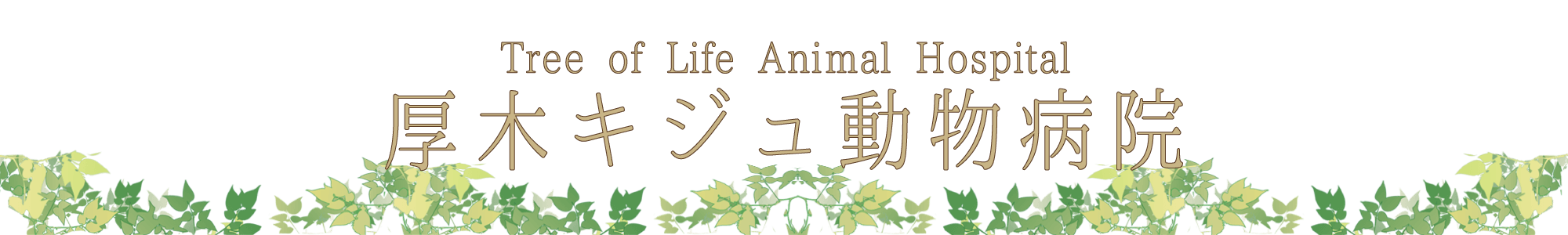 厚木キジュ動物病院|Tree of Life Animal Hospital