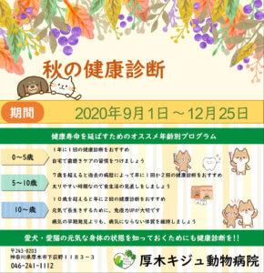 厚木キジュ動物病院2020年秋の健康診断キャンペーン