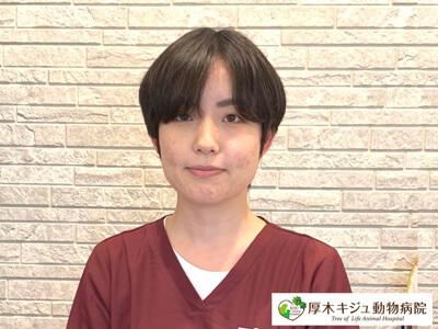 06-動物看護士|厚木キジュ動物病院